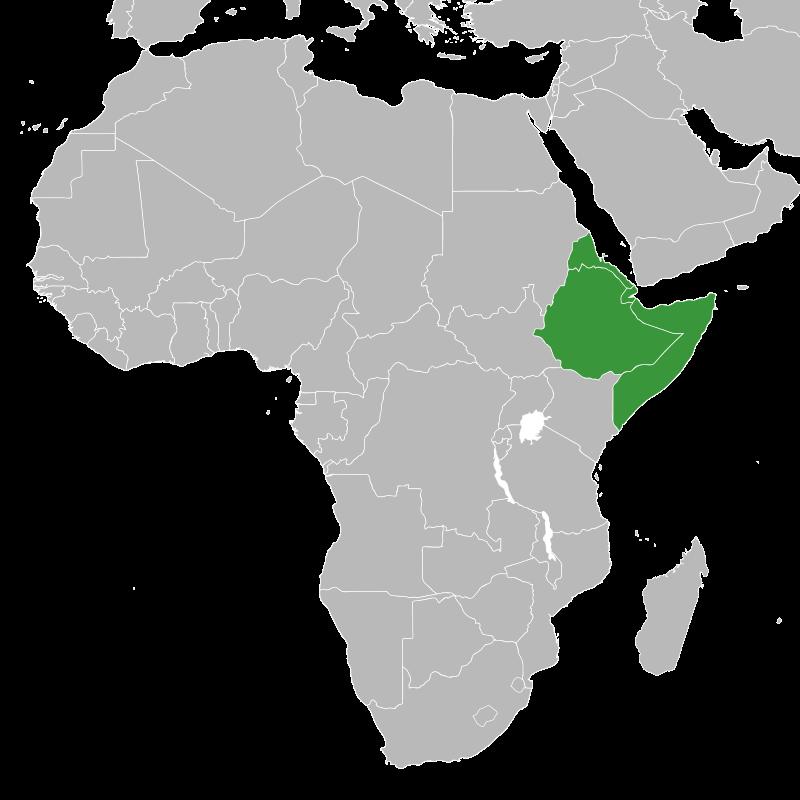 Die Staaten des Horns von Afrika – Äthiopien, Somalia, Eritrea und Dschibuti (Foto: Master Uegly)